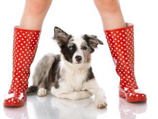 Frau in Gummistiefeln mit Hund
