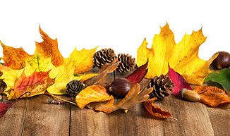 Geschenke zum Herbst