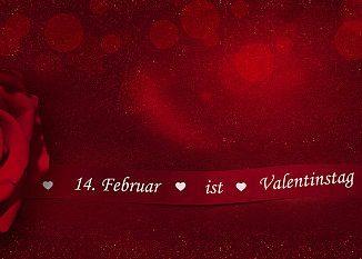 Rote Rose und Schriftzug Valentinstag